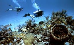 plongeurs nostalgiques image stock