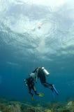 Plongeurs sur le safetystop sur bouy Photos libres de droits