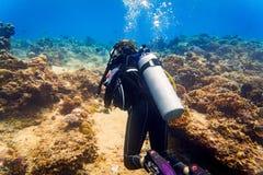 Plongeuse de femme à la plongée à l'air tropicale de récif coralien dans l'ocea tropical Images stock