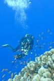 Plongeuse de fille et récif coralien en mer tropicale, uinderwater Photographie stock libre de droits
