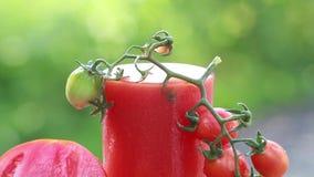 Plons van tomatesap en sappige rijpe tomaten in de dag van de aardzomer stock video