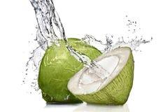 Plons van water op groene kokosnoot Stock Foto's