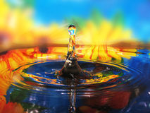 Plons in water Royalty-vrije Stock Foto