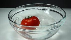 Plonsen van schoon water van een dalende rijpe tomaat bij witte achtergrond, langzame motie ??n rode tomaat in een glaskom  stock videobeelden