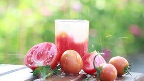 Plonsen van vers tomatesap en rijpe tomaten in openlucht stock videobeelden