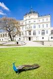 Ploskovice Palace Stock Photos