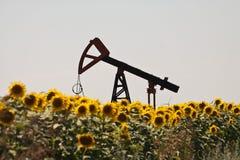 Plot de pompe de pétrole Photo libre de droits