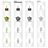 Plot,farm, nature and other web icon in cartoon style.Berries,vegetables, garden, icons in set collection. Royalty Free Stock Images