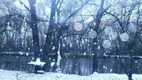 Plotagraph - lago del invierno con nieve que cae y luces spakling libre illustration