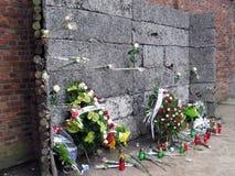 Plotone di esecuzione di Auschwitz Immagini Stock Libere da Diritti