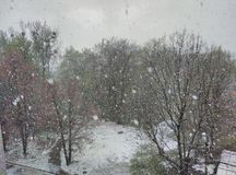 Plotselinge sneeuwstorm Royalty-vrije Stock Afbeeldingen