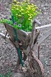 plough Стоковые Фотографии RF