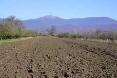 Plough agriculture field Royalty Free Stock Photos