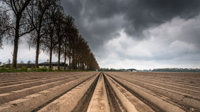 Plough agriculture field after sowing. Open farmland after seed potatoes are planted. Dark clouds are gathering over the open Dutch landscape to make it rain Royalty Free Stock Photos
