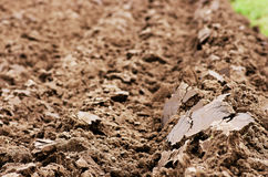 Plough field Royalty Free Stock Image