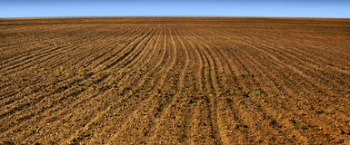 Plough-land. Plowed field and clear horizon Royalty Free Stock Photography