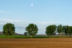 Plough land Stock Image