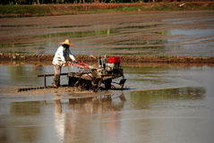 Plough machine and farmer. In the paddy field stock photo
