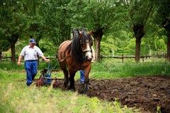 Plough o fazendeiro da terra Fotos de Stock