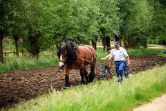 Plough o fazendeiro da terra Imagem de Stock Royalty Free
