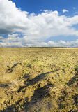 Plough plowed brown clay soil field Stock Image