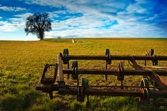 Plough and tree Stock Image