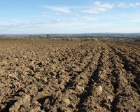 Ploughed Agricultural Land. Tillage or Ploughed Farm Land Stock Photo