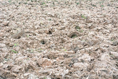 Ploughed agricultural land Stock Image
