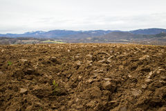 Ploughed agriculture field Stock Photos