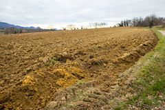 Ploughed agriculture field Stock Image