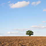 Ploughed Earth. Ploughed Soil on Farmland in Rural England Stock Photos