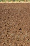 Ploughed earth Stock Photography