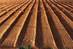 Ploughed farmland Stock Photos