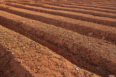 Ploughed farmland Stock Photography