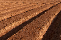 Ploughed farmland Royalty Free Stock Image
