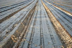 The ploughed field Stock Photo