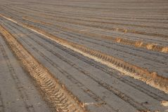 The ploughed field Royalty Free Stock Image