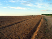 Ploughed field. The ploughed field is stretched to horizon Royalty Free Stock Image