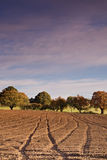 Ploughed Field. Tracks leading across a ploughed field early in the morning royalty free stock photo