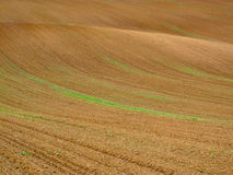 Ploughed field. Lines and colors on ploughed field royalty free stock photography