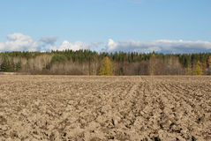Ploughed Field. A ploughed field, forest and blue sky with few clouds on a day in October. Photographed in Salo, Finland 2010 Stock Photo