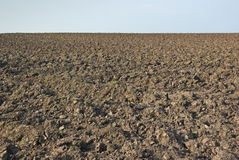 Free Ploughed Field Royalty Free Stock Photo - 19395955