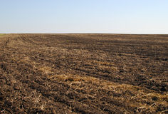 Ploughed field Stock Images