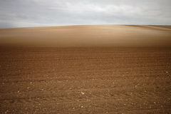 Ploughed field. With shalky patches Royalty Free Stock Image
