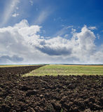 Ploughed field Royalty Free Stock Photos