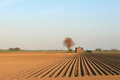 Ploughed field. Arable land with farmhouse and tree royalty free stock images