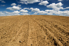 Free Ploughed Field. Royalty Free Stock Photo - 5208595