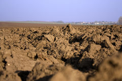 Ploughed field. Deep brown chunks Royalty Free Stock Photography