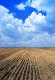 Ploughed field. Royalty Free Stock Image