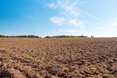 Ploughed field Royalty Free Stock Photo